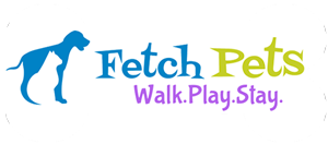 Fetch Pets Atlanta